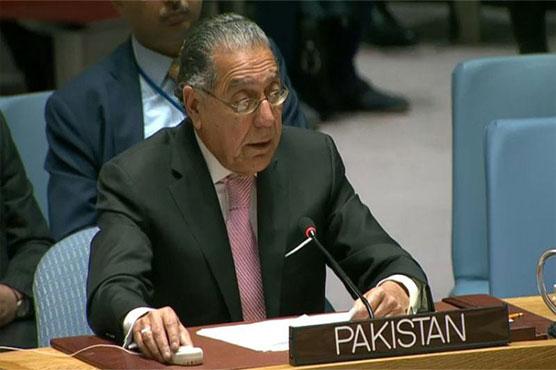 India involved in terrorism in Pakistan: Munir Akram