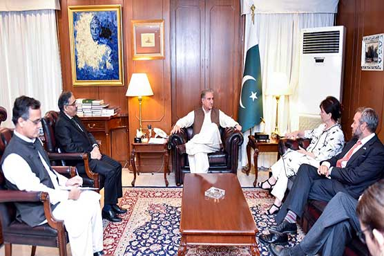 FM reiterates Pakistan's commitment to continue its efforts for peace in Afghanistan