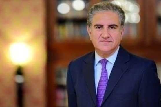 India won't succeed in its sordid designs to push Pakistan into FATF blacklist: FM Qureshi