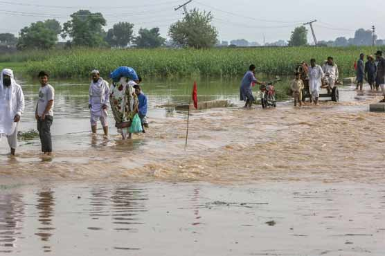Rain and floods continue havoc across Pakistan, multiple deaths reported
