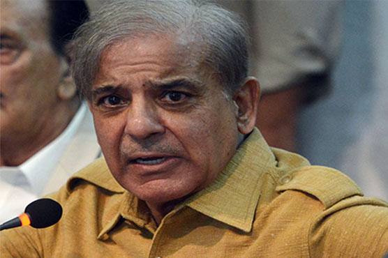 Shehbaz Sharif expresses regret over loss caused by rains in KP