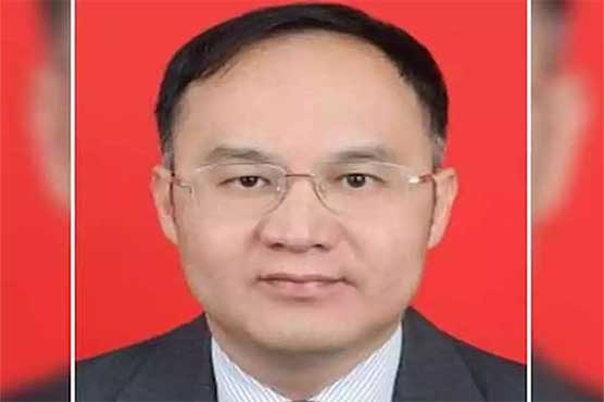 Nog Rong to be new Chinese ambassador to Pakistan: Chinese FM