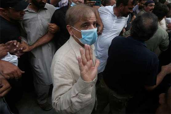 Court grants NAB 14-day physical remand of Shehbaz Sharif