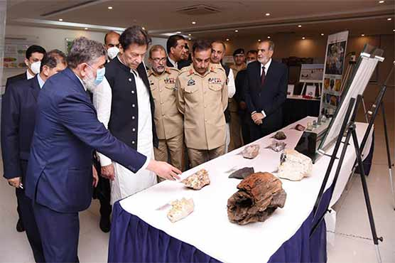 Nuclear capability safe under strong command, control system: PM