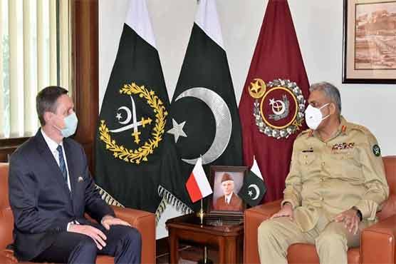 Polish ambassador calls on COAS Qamar Javed Bajwa