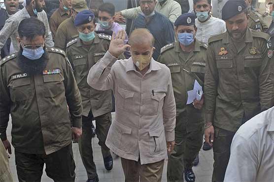LHC fixes Shehbaz Sharif's bail plea for hearing