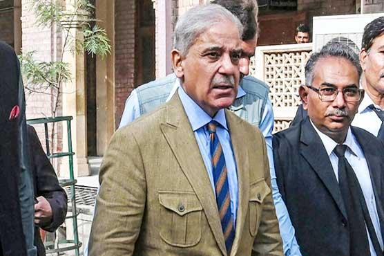 LHC approves bail plea of Shehbaz Sharif in money laundering case