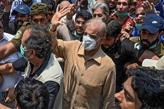 Shehbaz Sharif released on bail in money laundering case