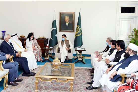PM calls for solidarity among Muslim Ummah to support Palestinian, Kashmir causes
