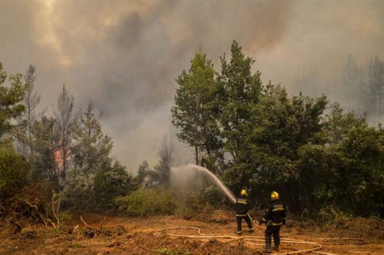 Rain helps firefighters in Greece but flare-ups continue