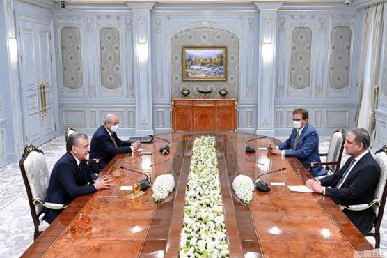 FM Qureshi meets Uzbek president; discusses Afghan evolving situation