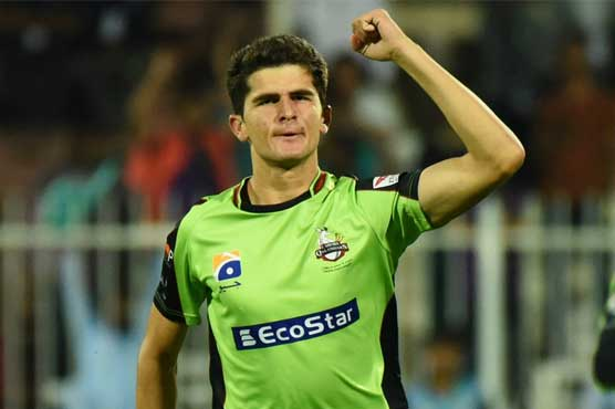 Shaheen Shah Afridi appointed vice captain of Lahore Qalandars