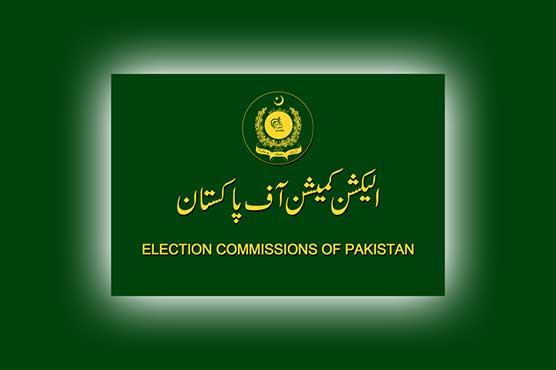 Scrutiny of nomination papers for Senate polls continues