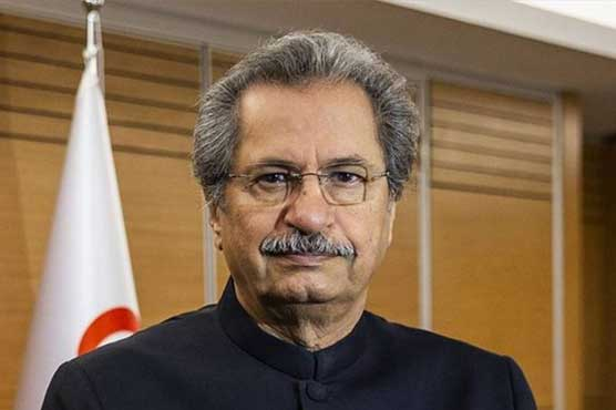 Final decision to open schools will be on health grounds: Shafqat Mehmood