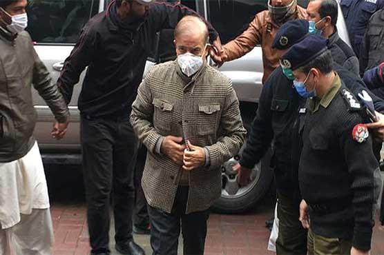 NAB court orders secretary health to provide medical reports to Shehbaz Sharif