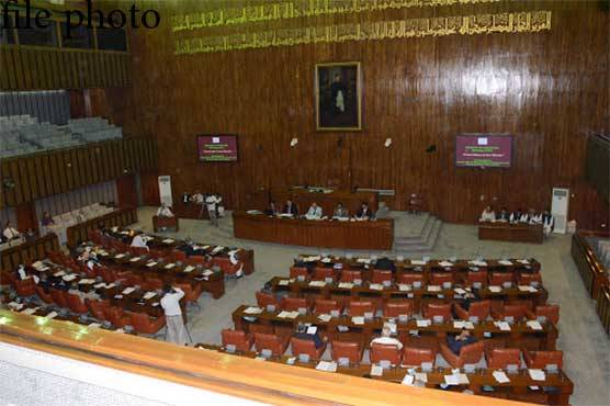 Senate session: PPP stages protest against Ali Amin Gandapur's statement