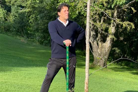 شجرکاری مہم: وزیراعظم عمران خان نے نتھیا گلی میں پائن کا پودا لگایا