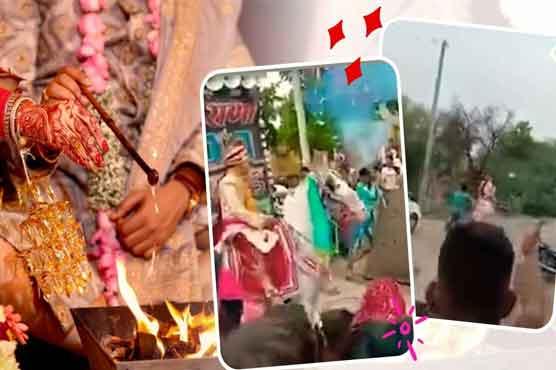 شادی کے موقع پر گھوڑا دلہے کو لیکر فرار، ویڈیو سوشل میڈیا پر وائرل