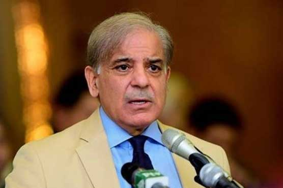 Shahbaz Sharif raises question over government's economic figures