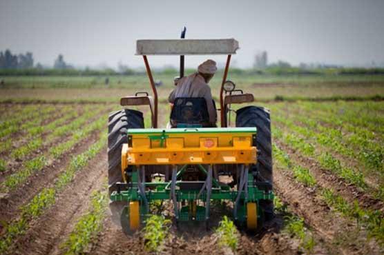 Punjab govt allocates Rs 31,497 million for agriculture