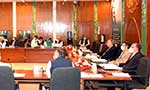 ECC allows provision of 500,000 MT wheat to KP during 2021-22