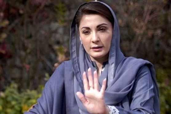 PTI has nominated PML-N senator for deputy chairman, claims Maryam Nawaz