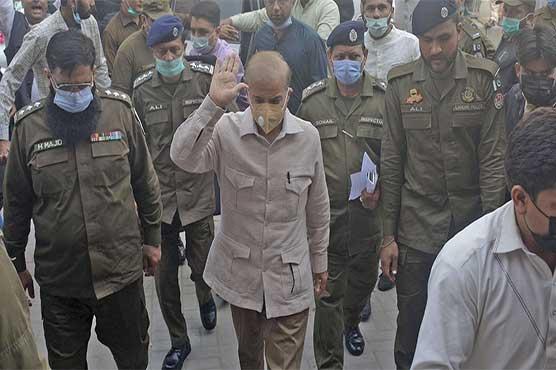 Shehbaz Sharif moves LHC for bail in money laundering case