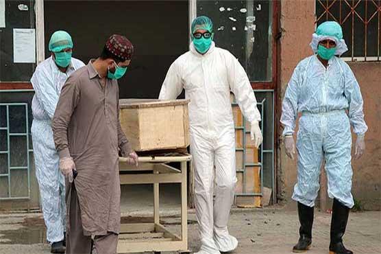 Pakistan reports 4,109 new coronavirus cases, 120 deaths