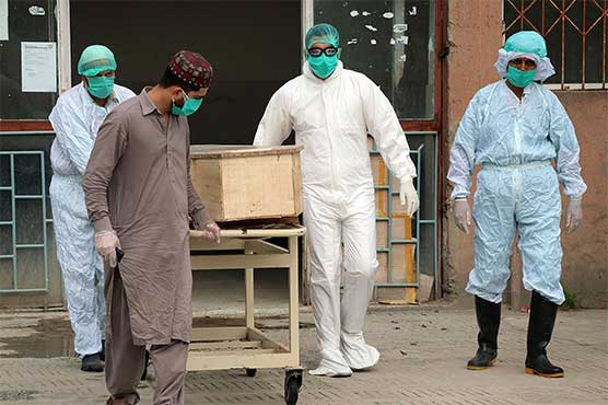 Pakistan reports 2,869 coronavirus cases, 104 deaths in 24 hours