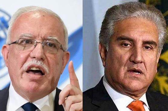Palestine expresses deep appreciation for Pakistan's unflinching support
