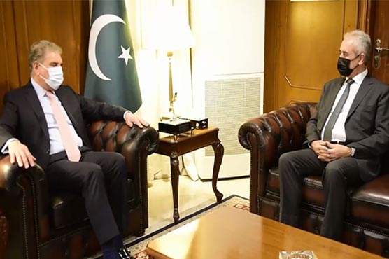 Palestinian envoy apprises FM Qureshi of latest situation on ground in Gaza