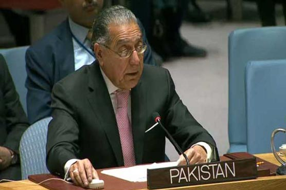 Pakistan calls on NAM to demand immediate end to Israel's deadly offensive in Palestine