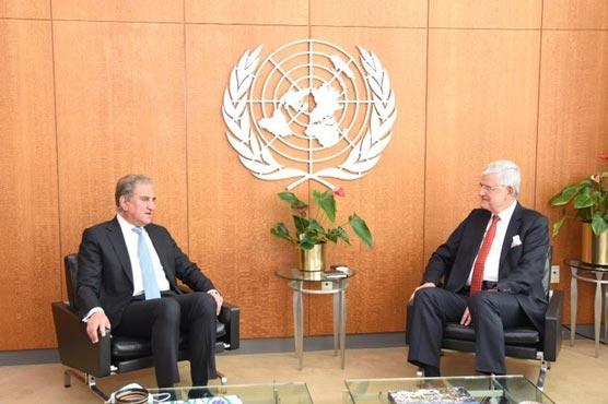 FM Qureshi meets UN General Assembly president, Volkan Bozkir
