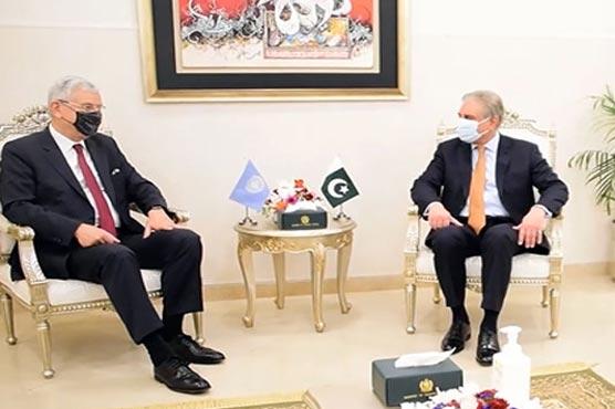 FM, UNGA President discuss Kashmir, Palestine disputes besides Afghan peace process