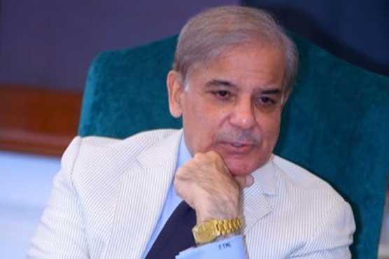 Shehbaz terms govt's economic statistics as fraudulent, unreliable