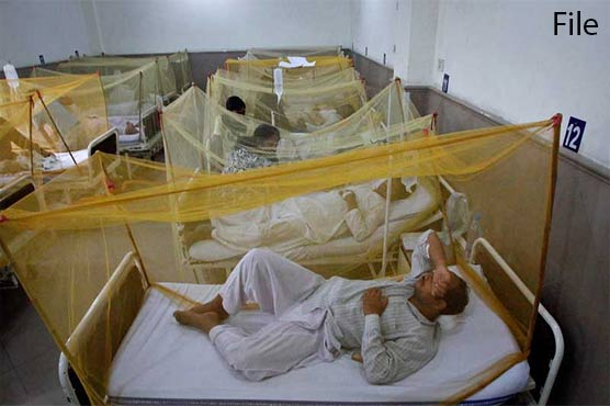 Dengue fever continues to grip Islamabad, KP as more cases reported