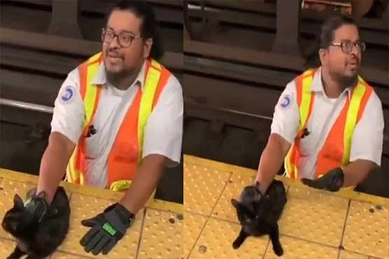 ریلوے ملازم نے بلی کو ٹرین کی زد میں آنے سے بچالیا