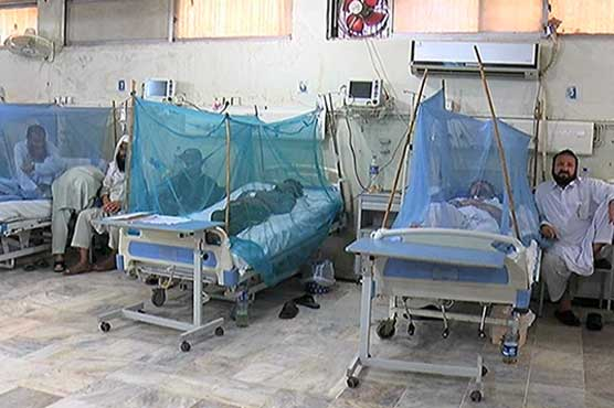 One more falls prey to dengue in Punjab, toll reaches 19
