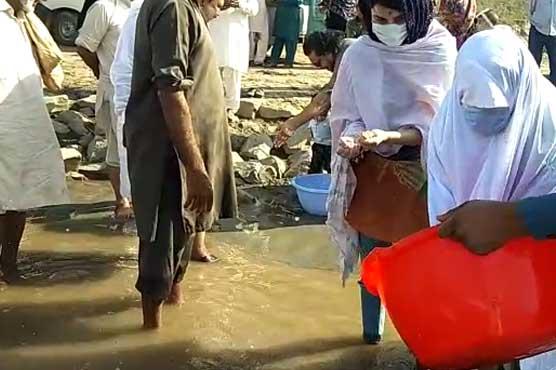 دریائے چناب میں 5 لاکھ بچہ مچھلی کو صدقہ کے طور پر چھوڑ دیا گیا