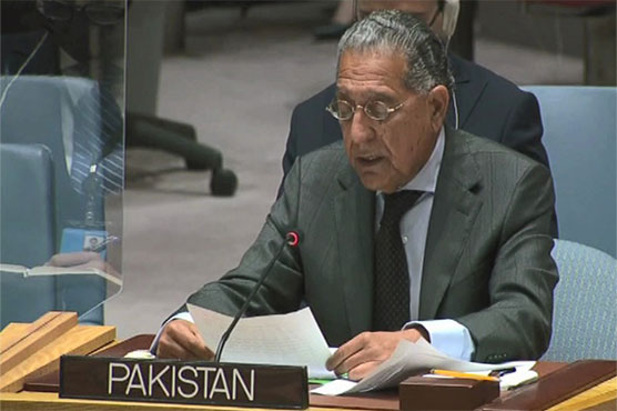 Afghan soil should not be used for terrorism in other countries: Munir Akram
