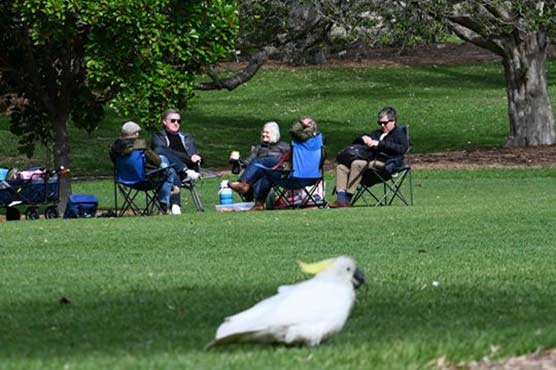 Vaccinated Sydney residents picnic as lockdown rules relaxed