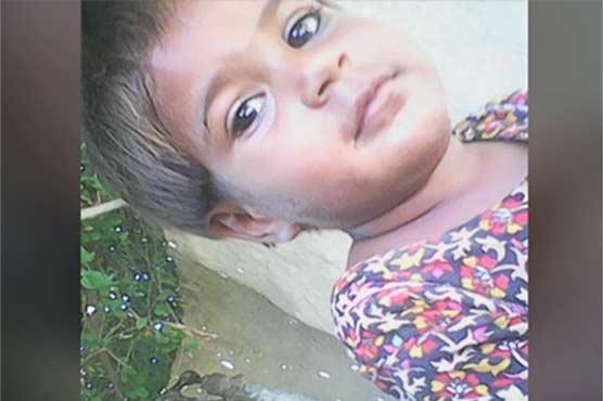 بااثر زمیندار کے کتوں کا 3 سالہ بچی پرحملہ، ہسپتال میں دم توڑ گئی، وزیراعلی کا نوٹس