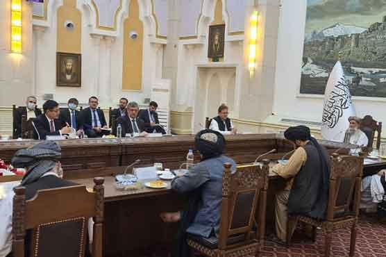 کابینہ میں توسیع، ہزارہ، تاجک اور ازبک برادری کے افراد افغان حکومت میں شامل