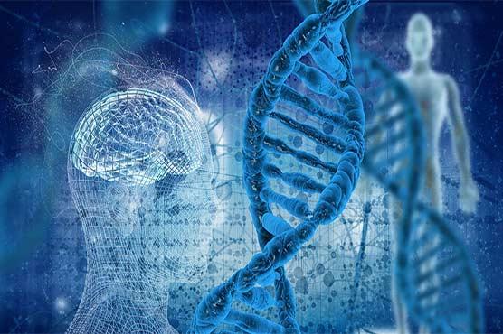 اب عام کمپیوٹر پر پورے انسانی جینوم کی پروسیسنگ ممکن