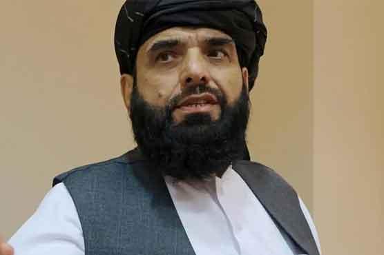 سہیل شاہین یو این میں طالبان کے سفیر نامزد، جنرل اسمبلی سے خطاب کی درخواست