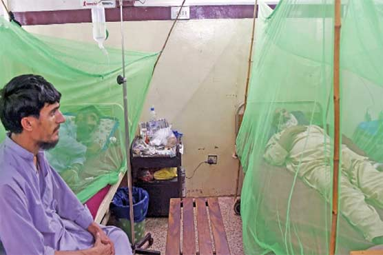22 districts of KP hit by dengue